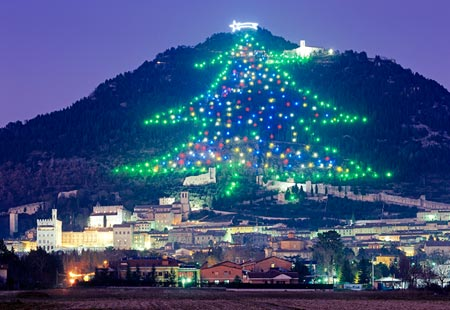 Brice Royer - (Pics) Largest And Unique Christmas Trees Around The ...